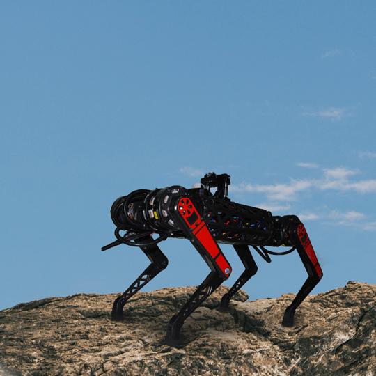 Dört Ayaklı Robot ARAT Kabiliyetleri