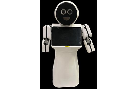 Hizmet Robotu Mini Ada 1 Resimleri